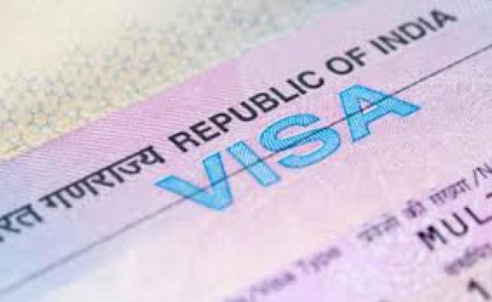 eligible for an OCI or a PIO type visa, Visa to India