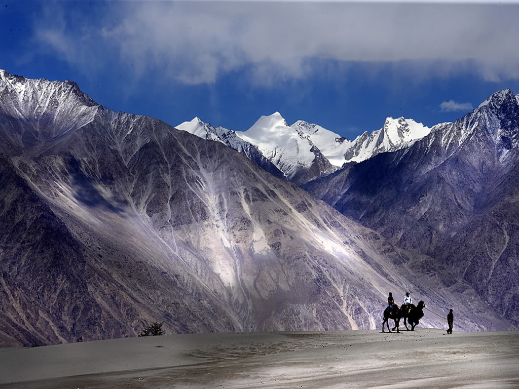 Nubra Valley with Double Humped Camels (Photo Credits)
