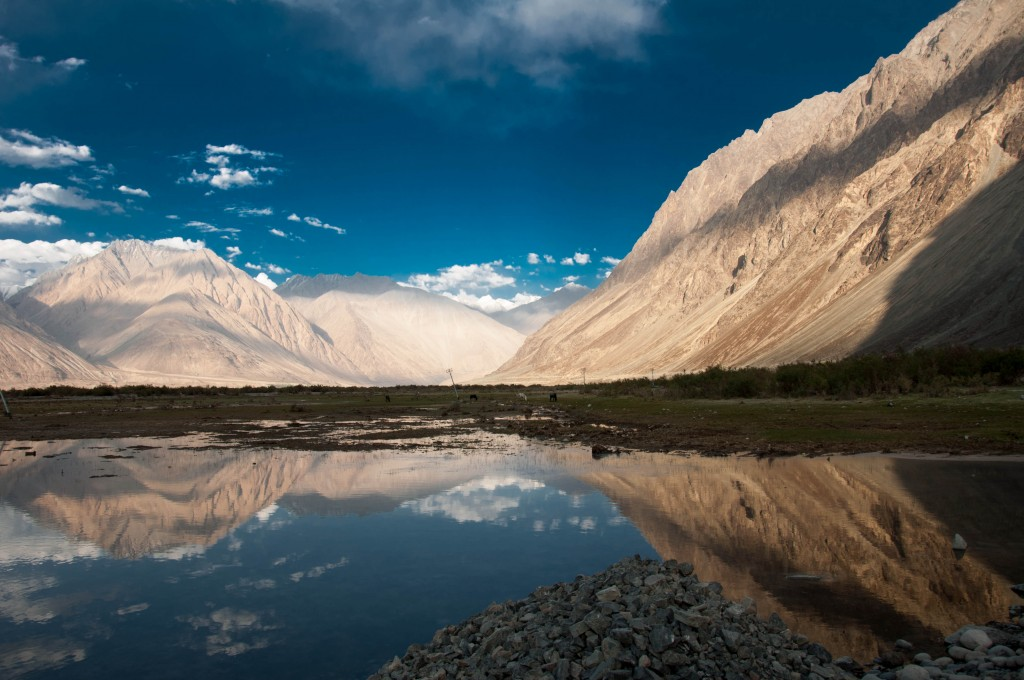 Worth the drive, Beautiful Nubra Valley (Photo Credits)