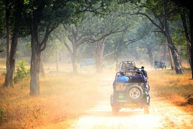 safari in India, Weather in India in November