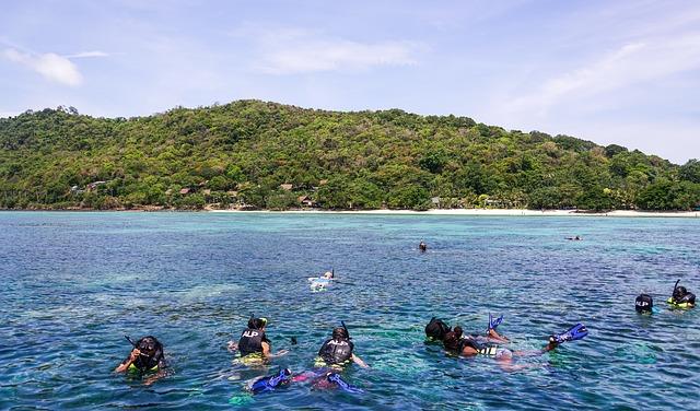 view corals