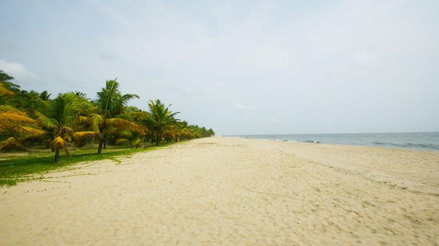 Marari_Beach_Resort_DSC06002