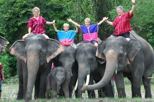 famille et elephants