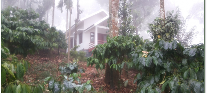 3-Cottage-in-the-clouds...-would-come-back-to-Kerala-just-to-stay-here-for-a-week1-670x300
