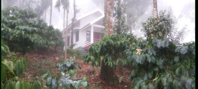 Kerala Anyday : First Stop North Kerala Wayanad