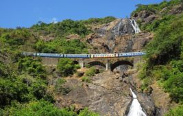 Goa, Dudhsagar Wasserfall