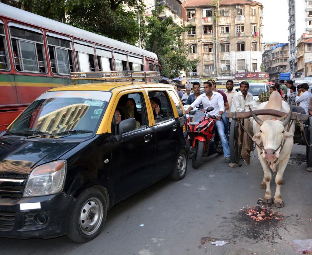 Bombay markt