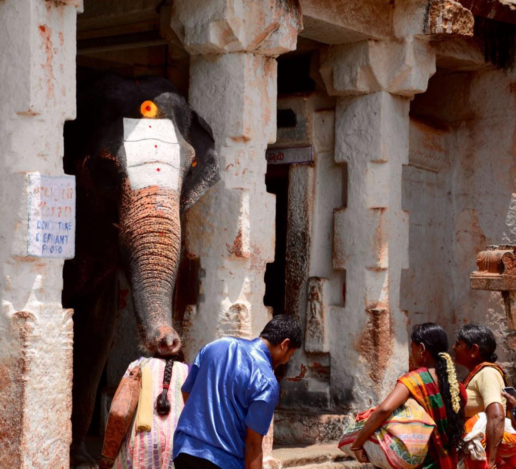 Hampi-Virkupaksha-Lakshmi