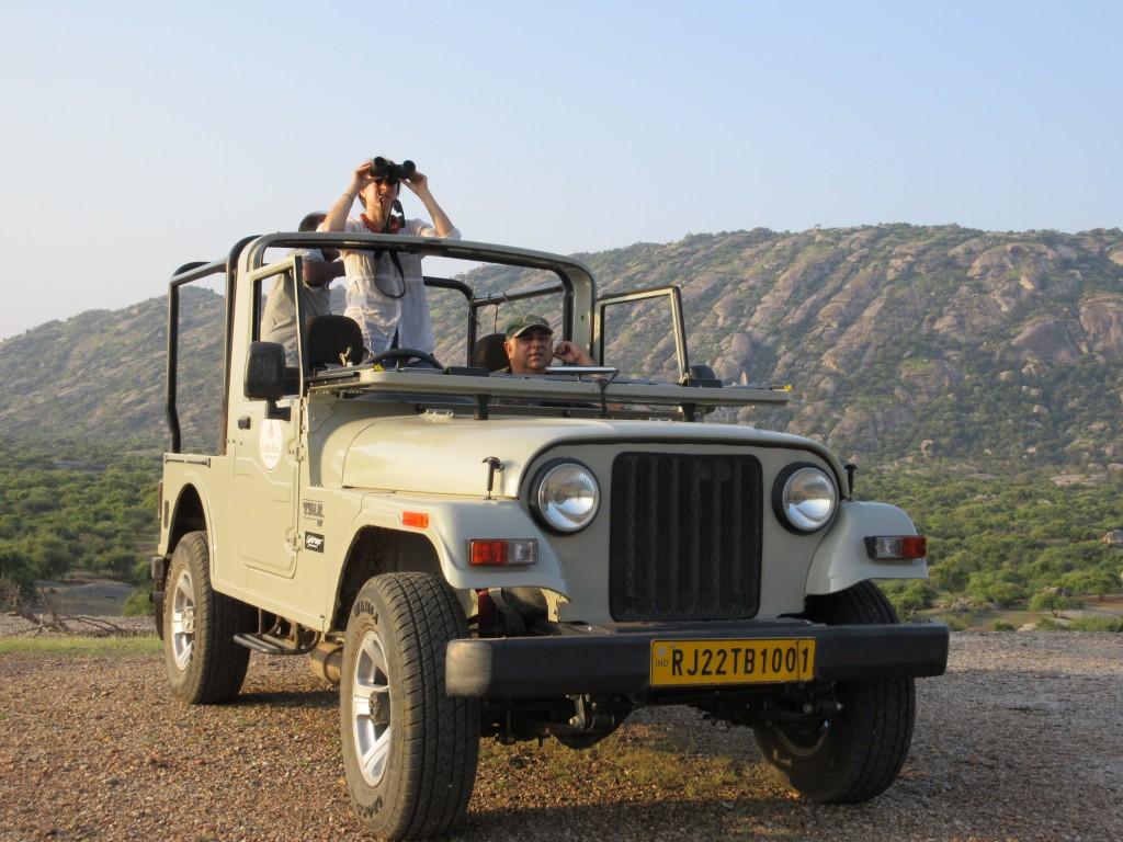 ramblinairum, leopard safari, rajahstan