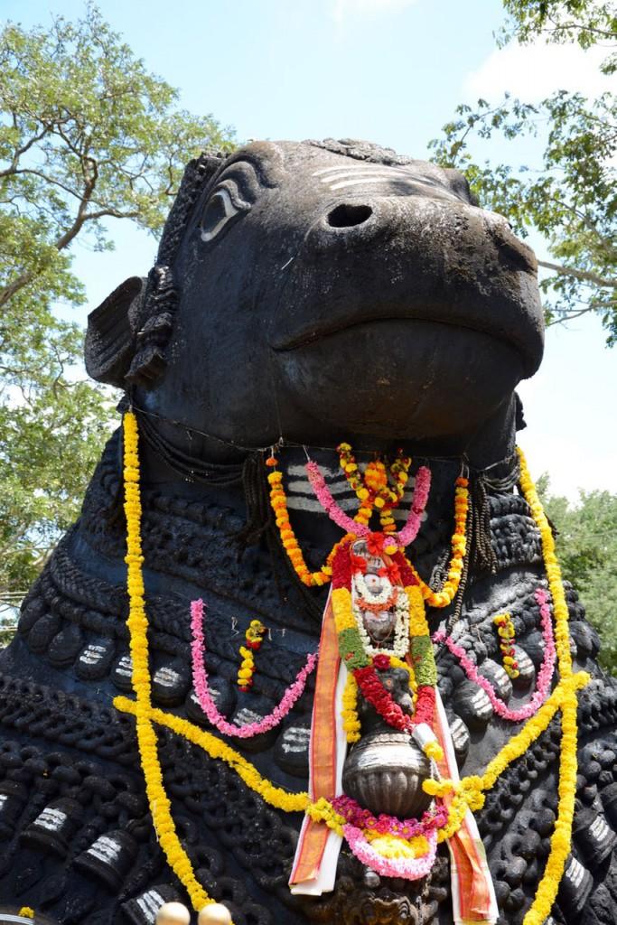 Mysore_Nandi