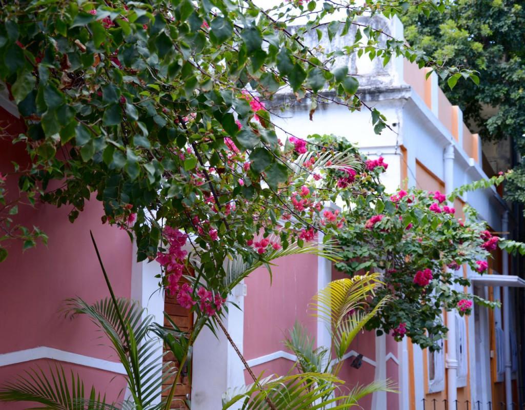 Pondicherry_VilleBlanche_Haus_bunt