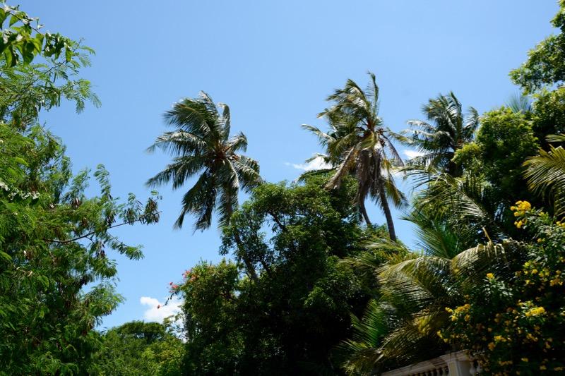 Wetter-Suedindien-Regenzeit-Pondicherry-1