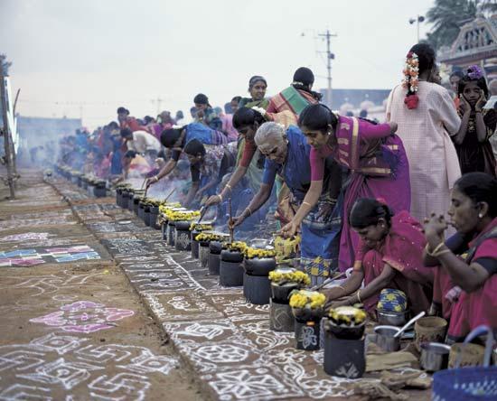 festival de pongal