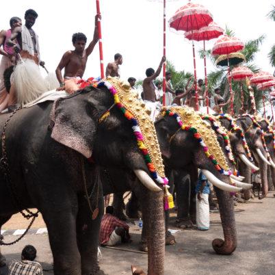 Unique Festivals in Kerala
