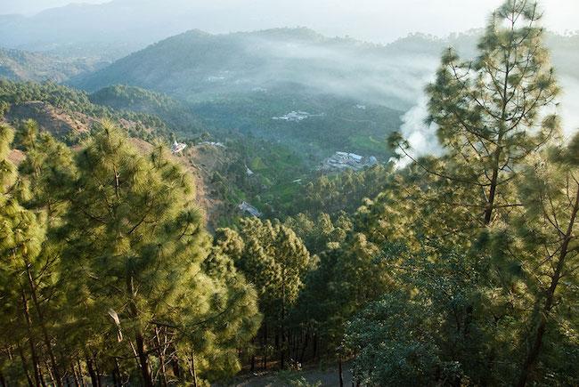 Himalaya Indien Kasauli