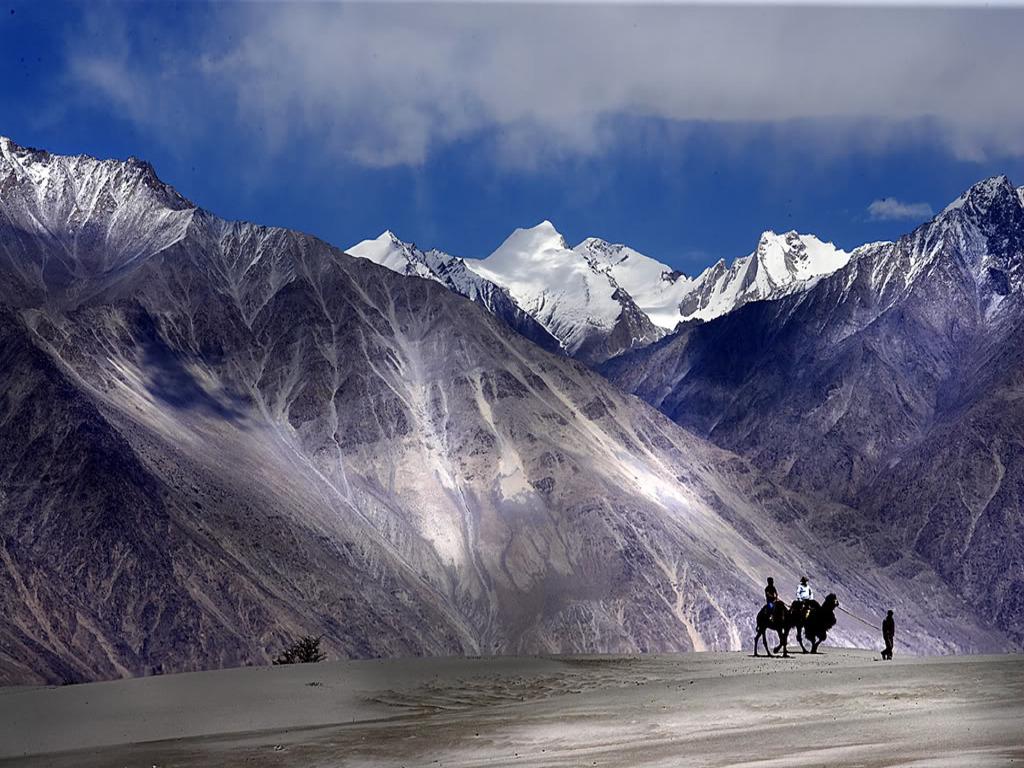 Ladakh La vallée de Noubra