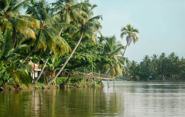 two weeks in south india, kerala, backwaters