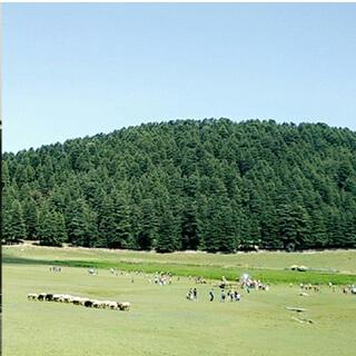 Dharamshala-Evaneos