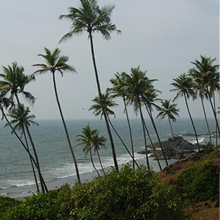 Goa-5