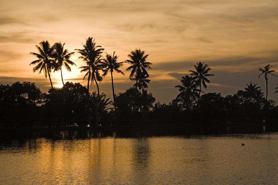 Paysage idyllique au Kerala