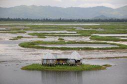 loktak see, manipur, nordostindien