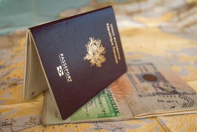 Indian E- visa process