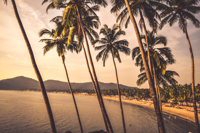 von goa nach Kerala
