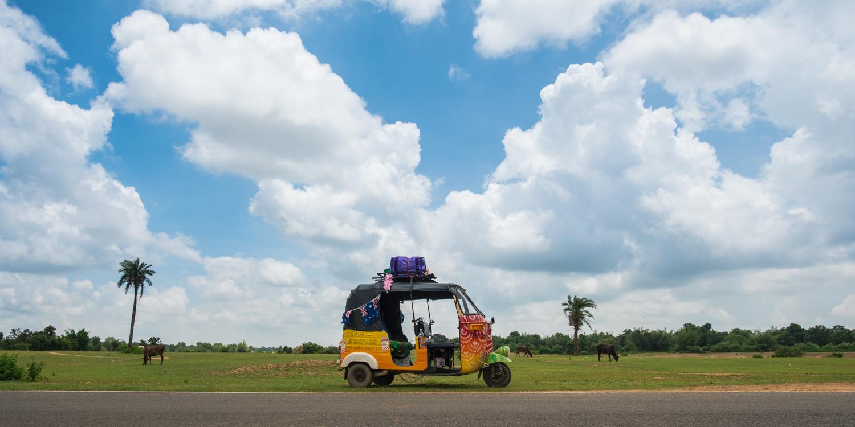 Combien coute un voyage en inde india someday for Combien coute un paysagiste