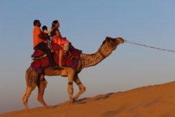 places to visit in rajasthan, jaisalmer, camel, desert