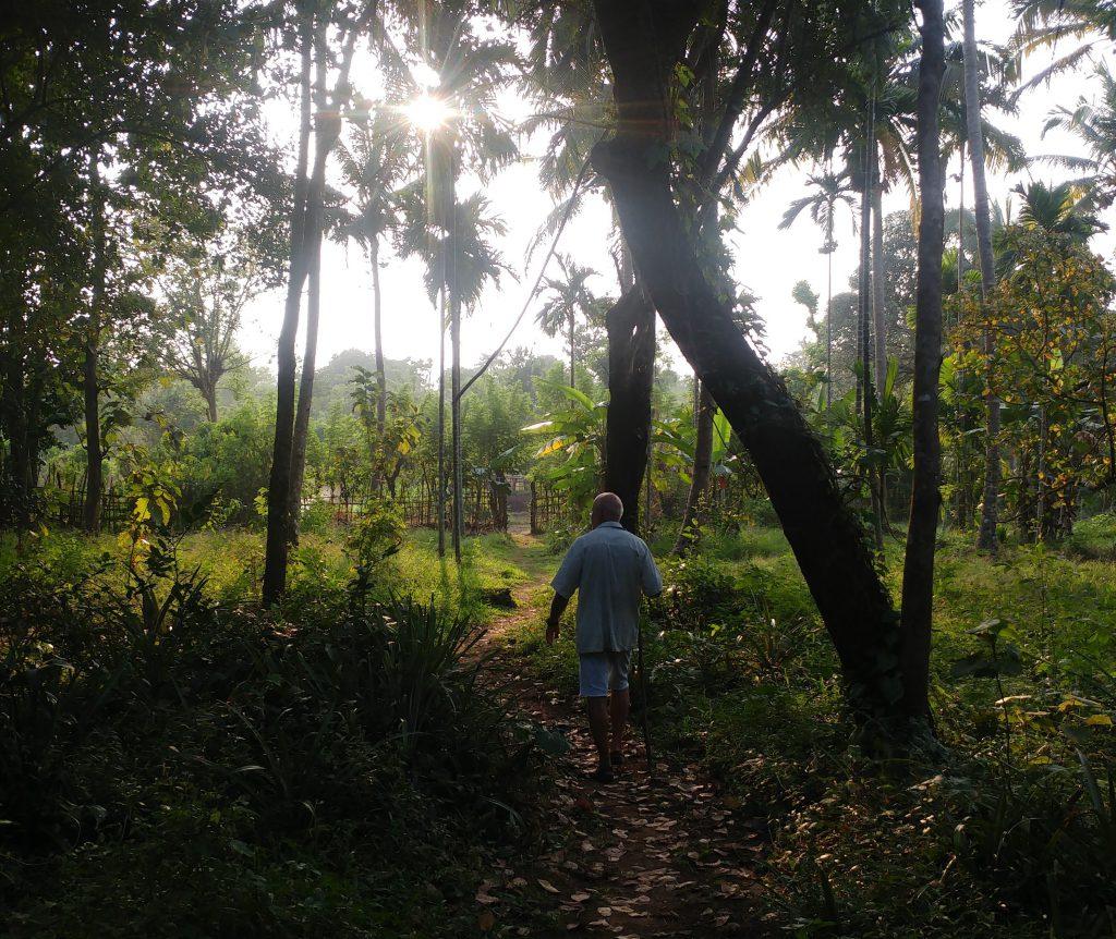 Nachhaltiges Homestay in Goa - Biohof in Goa