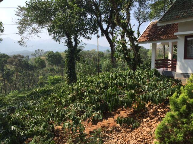 Visting Wayanad in India