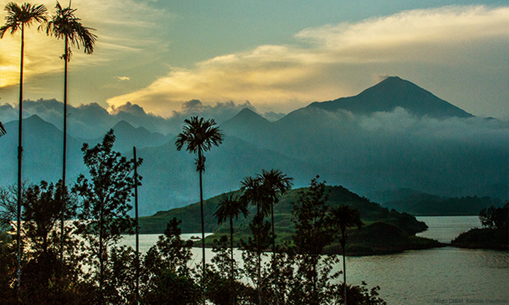The beautiful landscapes of Wayanad.