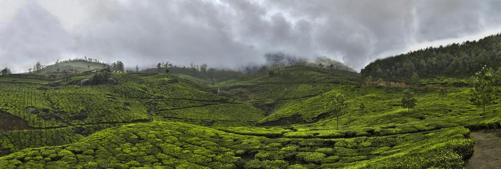 Munnar in Monsun