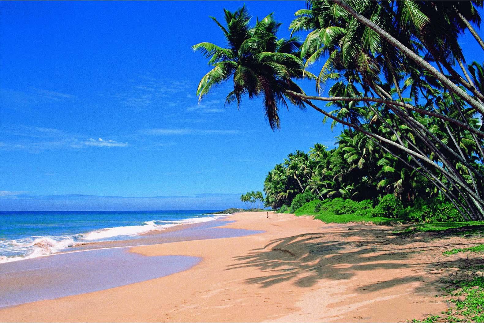 Agonda-Beach