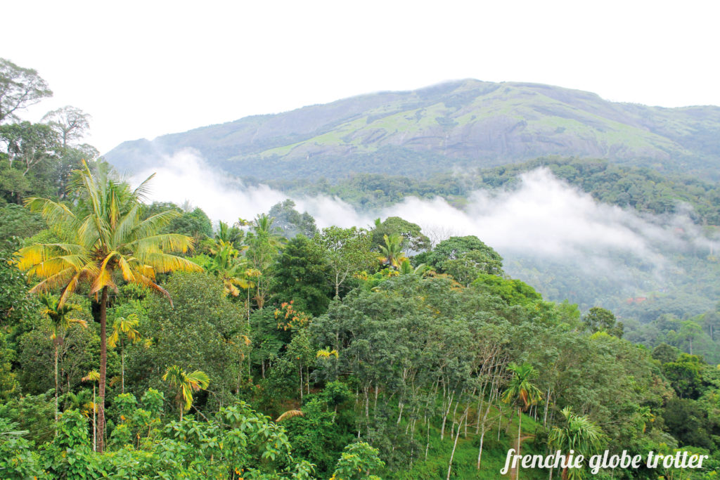 Munnar in the Western Ghats is famous for its tropical mountain climate as well as the tea plantations. A great destination even in the rain!