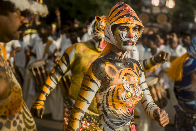 onam, india during festival season, tigers