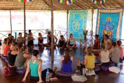 yoga in indien, yoga lehrer ausbildung