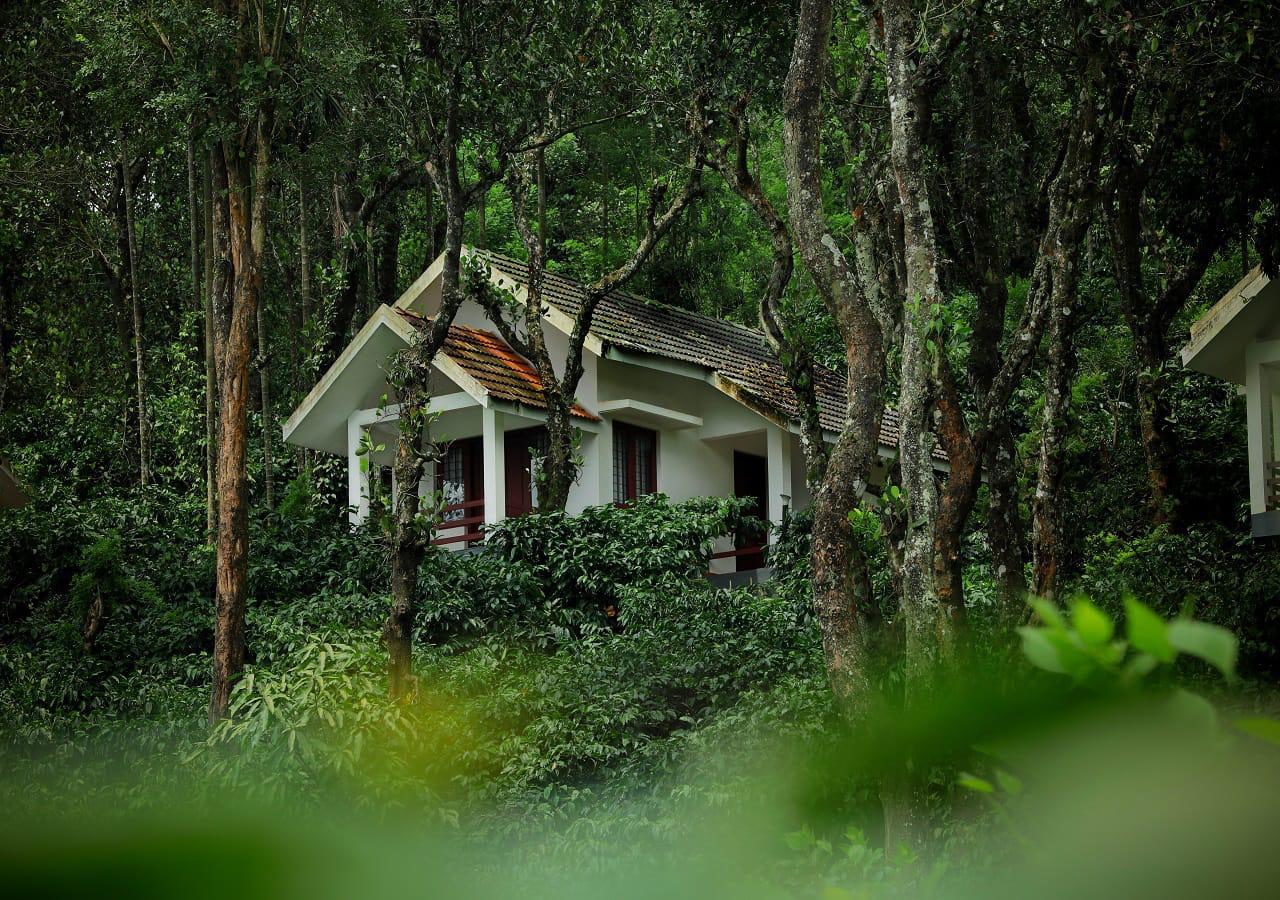 Dhanagiri homestay Wayanad