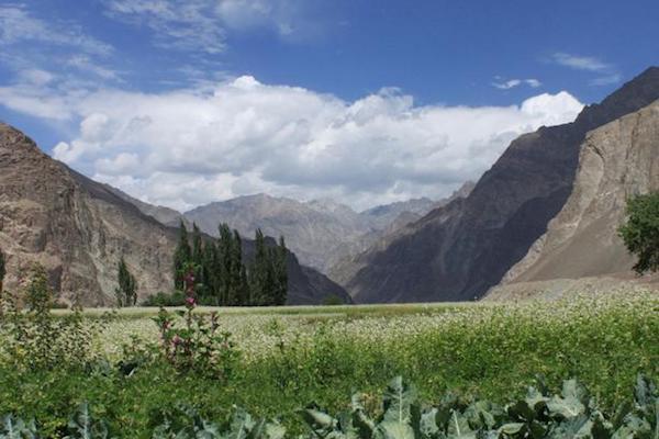 Ladakh Reise