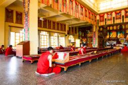 Dharamshala, Monks