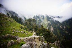 wandern im himalaya, triund hill