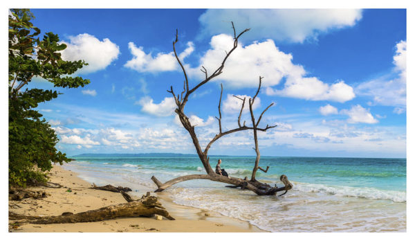 Andaman Islands, Why visit Andamans, Luxury beach destination in India