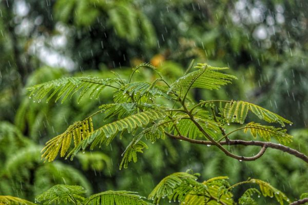 Monsoons in India, off season in India