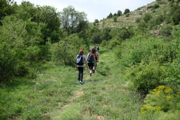 Trekking in South India