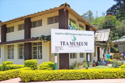 Tata Tea Musuem Kerala, Tea plantation tours