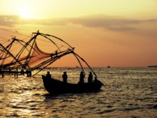 Things to do in Kochi