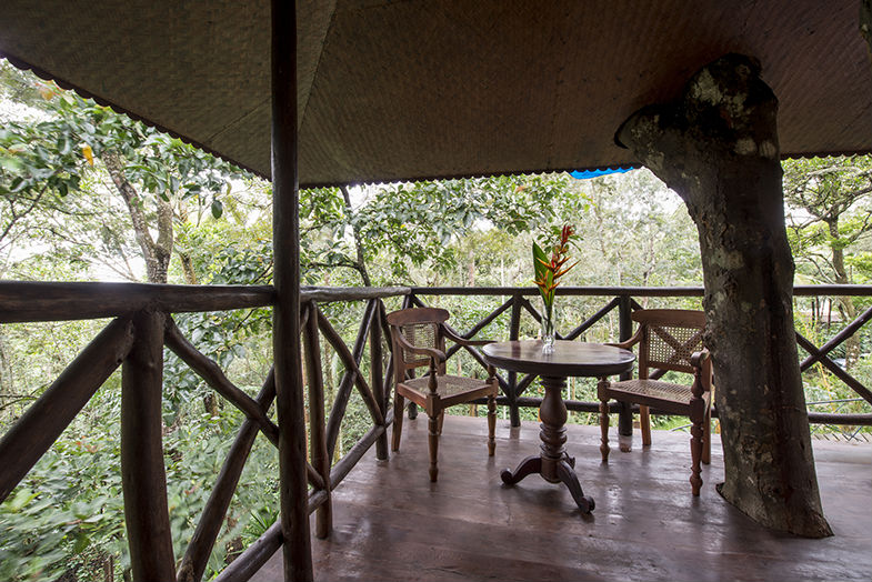 Treehouses in Kerala, Unique experiences in India