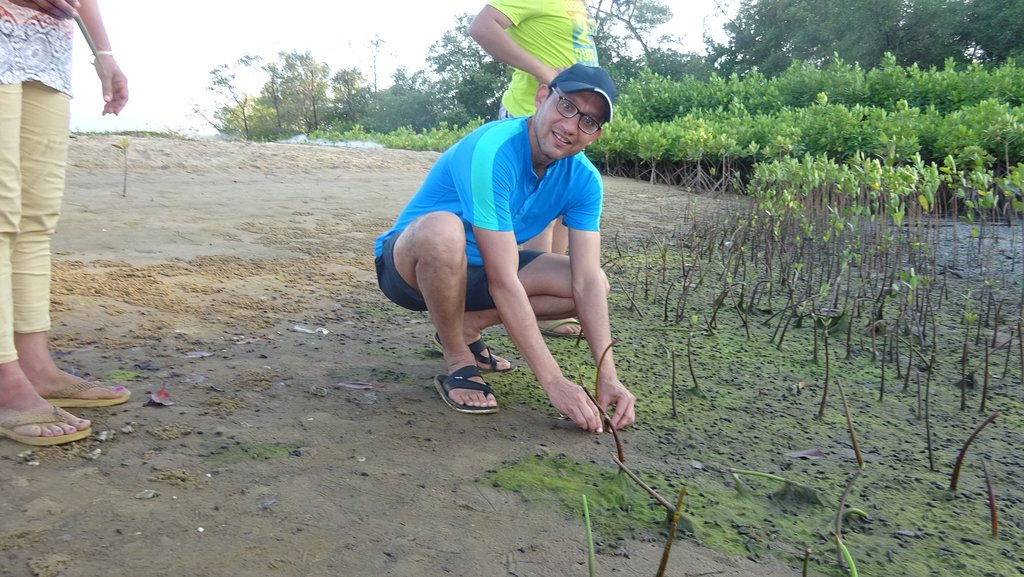 Voluntering in afforestation In South India