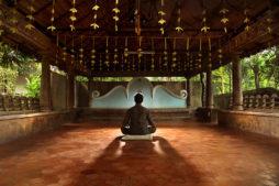 Yoga retreats in Kerala, India
