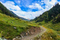 Travelling to Himachal Pradesh